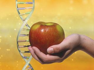 neutrigenomics gene care mumbai india